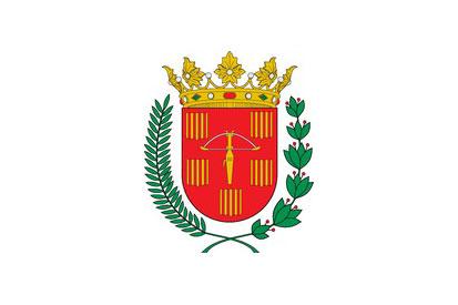 Bandera Sariñena