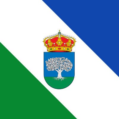 Bandera Santovenia de la Valdoncina