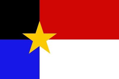 Bandera Regionalismo manchego