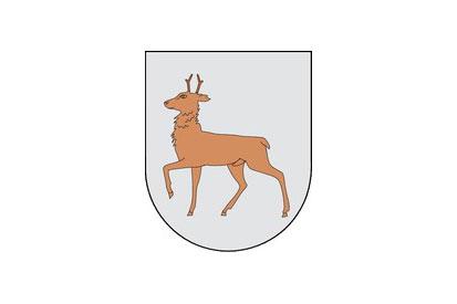 Bandera Ibargoiti