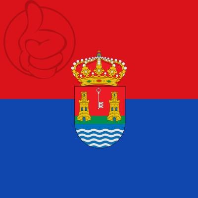Bandera Alcazarén