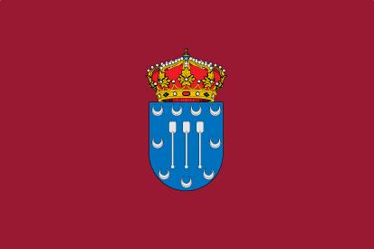 Bandera Dueñas