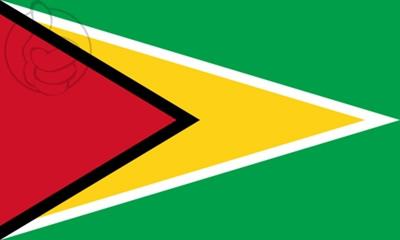 Bandera Guyane