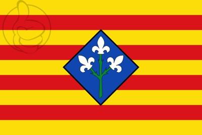 Bandera Provincia de Lérida