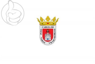 Bandera Soria