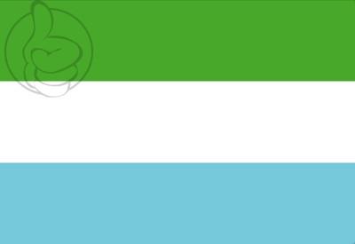 Bandera Torremolinos S/E