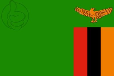 Bandera Zambie