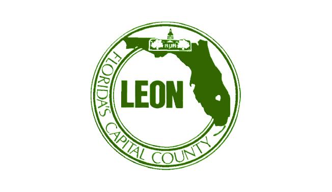 Bandera de Condado de León