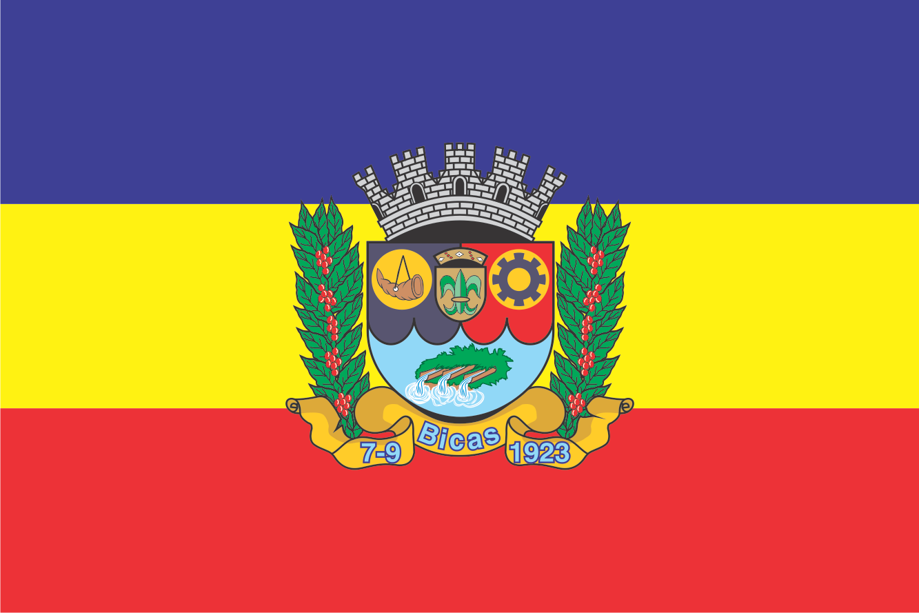 Bandeira do Bicas