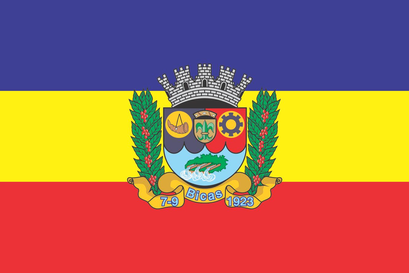 Bandiera di Bicas