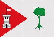 Bandera de Pinet