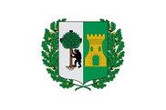 Bandera de Leioa