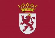 Bandera de Región de León