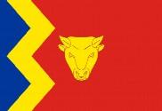 Bandiera di Birmingham