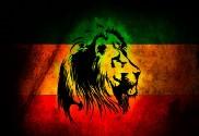 Bandera de Rastafari personalizada león