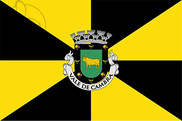 Flag of Vale de Cambra Municipality