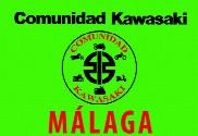 Bandera de Comunidad Kawasaki Málaga Verde