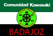 Flag of Community Kawasaki Extremadura Badajoz