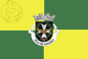 Bandera de Gavião