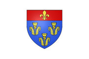 Bandera de Pithiviers