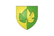 Bandera de Saint-Denis-en-Val