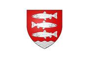 Bandera de Saint-Amand-en-Puisaye