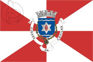 Flag of Covilhã
