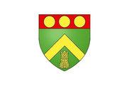 Bandera de Tour-en-Sologne