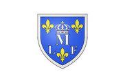 Bandera de Montargis