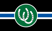 Bandeira do Pony PRIDE
