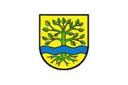 Bandera de Ammerbuch
