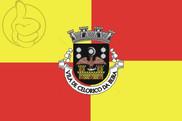 Bandeira do Celorico da Beira