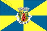 Bandiera di Seia
