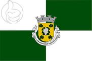 Bandera de Figueiró dos Vinhos