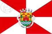 Bandera de Leiria