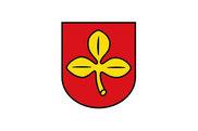 Bandera de Salzkotten