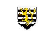 Bandera de Dattenberg