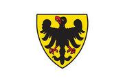 Bandera de Sinsheim