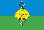 Bandera de Syktyvkar