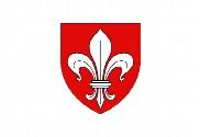 Bandera de Lille