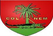 Bandera de Nimes