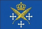 Bandera de Saint-Etienne