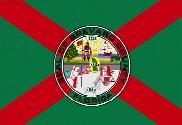 Bandera de Condado de Brevard