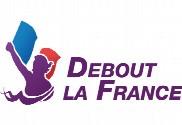 Bandera de de pie en Francia