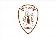 Bandera de Cayuga