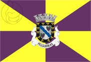 Bandera de Felgueiras