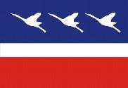 Bandera de Guaratinguetá