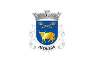 Bandera de Afonsim