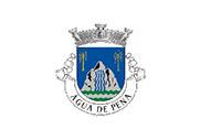 Bandera de Água de Pena