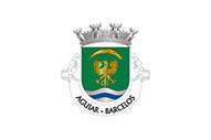 Bandera de Aguiar (Barcelos)